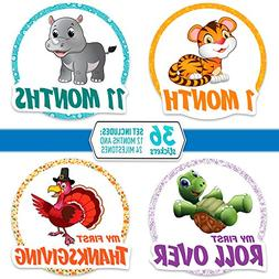 """36 Pack of 4.5"""" Premium Baby Belly Stickers: Set Includes 12"""